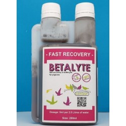 Centaur Betalyte 250ml -...